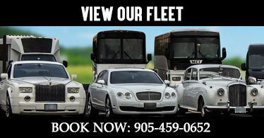 Limo and Party Bus Fleet